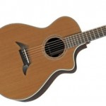 Breedlove C25/CR