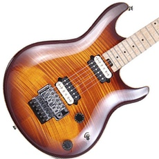 Peavey HP Special